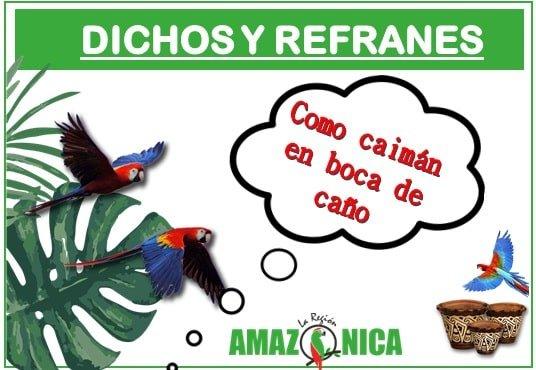 dichos y refranes de la amazonia