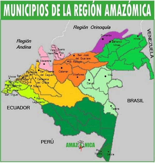 departamentos de la region amazonicq