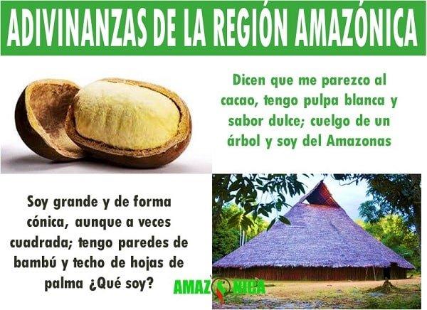 adivinanzas de la region amazonica
