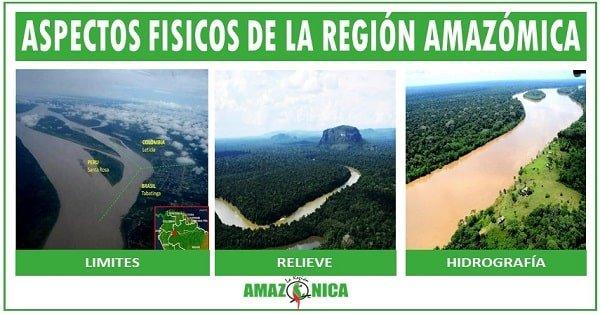 cuales son los aspectos fisicos de la region amazonica