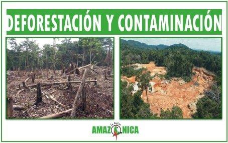 Problematica ambinetal de la region amazonica