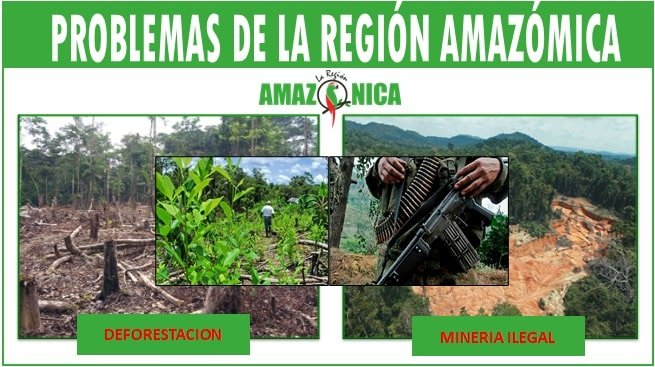 Problemas de la region amazonica de Colombia
