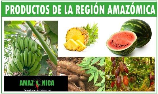 Productos agriolas de la region amazonica