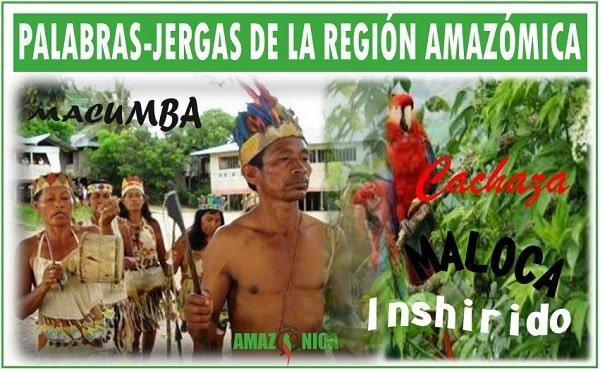 palabras de la region amazonica