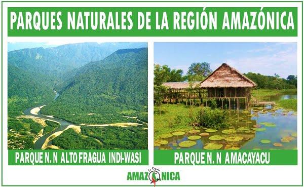 parques nacionales naturales region amazonica