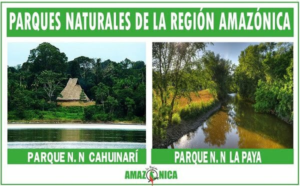 parques naturales de la region amazonica