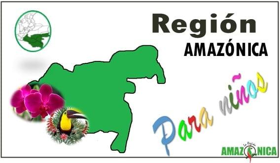 Caracteristicas de la region amazonica para niños